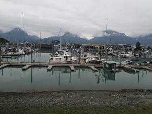 Harbour Valdez