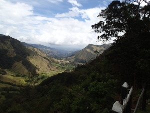 Valley de Cocora