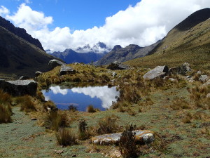 High in the Cordillera Blanca
