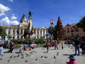 Christmas tree in La Paz on the Plaza Mayor