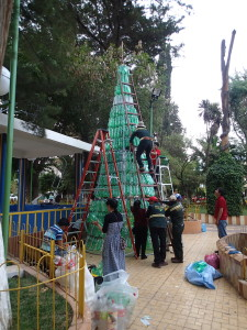 Christmas tree is going up, out of plastic bottles